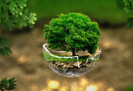 Cubic33 Group réaffirme ses engagements associatifs et environnementaux