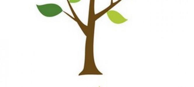 Plantation d'arbres compensation construction